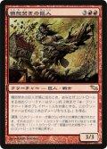 憤怒焚きの巨人/Furystoke Giant [SHM-JPR]