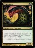朽ちゆくヒル/Putrid Leech [ARB-JPC]