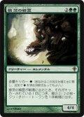 狼茨の精霊/Wolfbriar Elemental [WWK-JPR]