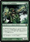 サシーリウムの神語り/Sacellum Godspeaker [ALA-JPR]