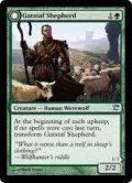 ガツタフの羊飼い/Gatstaf Shepherd [ISD-ENU]