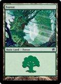 【FOIL】森/Forest #246 [SOM-ENB]