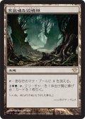 不気味な辺境林/Grim Backwoods [DKA-JPR]