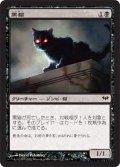 黒猫/Black Cat [DKA-JPC]