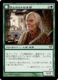 【FOIL】ラムホルトの古老/Lambholt Elder [DKA-JPU]