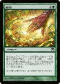 耕作/Cultivate [P12-JPC]