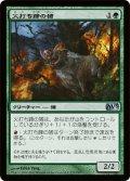 火打ち蹄の猪/Flinthoof Boar [M13-JPU]