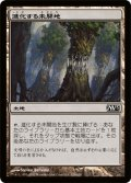 【FOIL】進化する未開地/Evolving Wilds [M13-JPC]