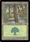 森/Forest C [PO2-ENB]