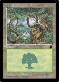 森/Forest B [PO2-ENB]