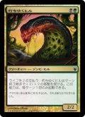 朽ちゆくヒル/Putrid Leech [IvG-JPC]