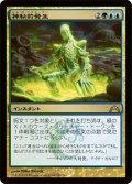 神秘的発生/Mystic Genesis [GTC-JPR]