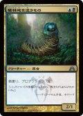 植林地を這うもの/Woodlot Crawler [DGM-JPU]