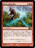 野生の跳ね返り/Wild Ricochet [M14-JPR]