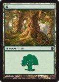 【FOIL】森/Forest #249 [THS-JPB]