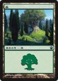 森/Forest #247 [THS-JPB]