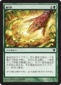 耕作/Cultivate [C13-JPC]