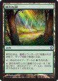 鮮烈な林/Vivid Grove [C13-JPU]