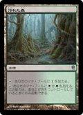 汚れた森/Tainted Wood [JvV-JPU]