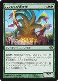 ハイドラの繁殖主/Hydra Broodmaster [JOU-JPR]