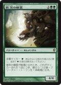 【FOIL】狼茨の精霊/Wolfbriar Elemental [CNS-JPR]