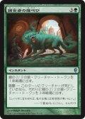 【FOIL】捕食者の雄叫び/Predator's Howl [CNS-JPU]