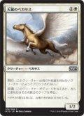 天麗のペガサス/Sungrace Pegasus [M15-JPC]