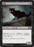 黒猫/Black Cat [M15-JPC]
