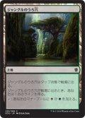 【FOIL】ジャングルのうろ穴/Jungle Hollow [KTK-JPC]