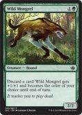 野生の雑種犬/Wild Mongrel [DD3-ENC]