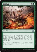 爆発的植生/Explosive Vegetation [DTK-JPU]