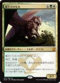 龍王ドロモカ/Dragonlord Dromoka [DTK-JPM]