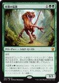 死霧の猛禽/Deathmist Raptor [DTK-JPM]