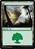 【FOIL】森/Forest #262 [DTK-JPB]