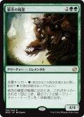 狼茨の精霊/Wolfbriar Elemental [MM2-JPR]