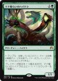 【FOIL】マナ喰らいのハイドラ/Managorger Hydra [ORI-JPR]
