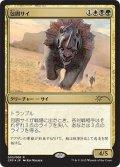 【Promo】包囲サイ/Siege Rhino [Clash Pack]