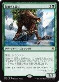放浪する森林/Woodland Wanderer [BFZ-JPR]
