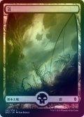 【FOIL】沼/Swamp #261 [BFZ-JPB]