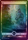 【FOIL】沼/Swamp #263 [BFZ-JPB]
