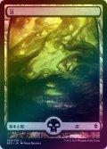 【FOIL】沼/Swamp #260 [BFZ-JPB]