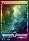 【FOIL】沼/Swamp #264 [BFZ-JPB]