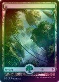 【FOIL】森/Forest #271 [BFZ-JPB]