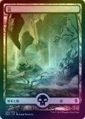 【FOIL】沼/Swamp #262 [BFZ-JPB]