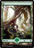 森/Forest #270 [BFZ-JPB]