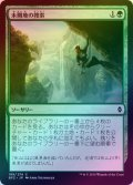【FOIL】未開地の捜索/Seek the Wilds [BFZ-JPC]