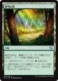 鮮烈な林/Vivid Grove [C15-JPU]