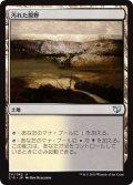 汚れた原野/Tainted Field [C15-JPU]