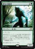 【FOIL】銀毛の援護者/Silverfur Partisan [SOI-JPR]