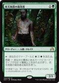 【FOIL】死天狗茸の栽培者/Deathcap Cultivator [SOI-JPR]